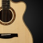 NAMM 2014: Private Stock Alex Lifeson Thinline Signature Acoustic